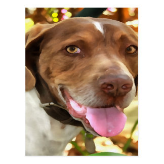 Arthur The Hunting Dog Postcard