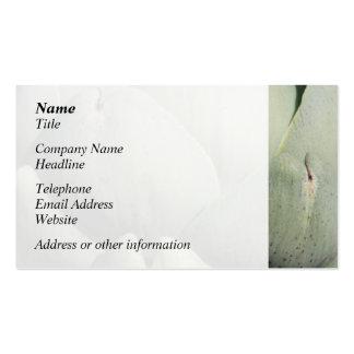 Artichoke Close Up Image. Business Card Template