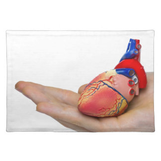 Artificial human heart model on hand placemat