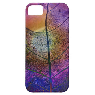 Artistic abstract with Leaf Skeleton iPhone 5 Cover