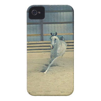 Artistic Arabian iPhone 4 Case-Mate Cases