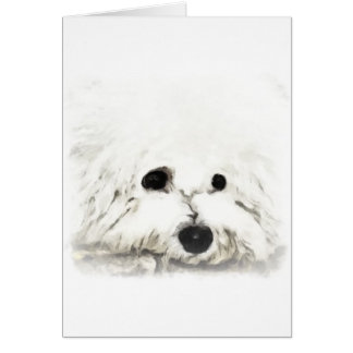Artistic Bichon head aquarelle Card