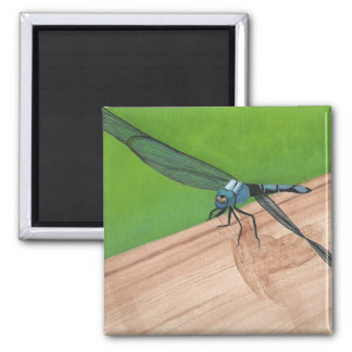 Artistic Blue Dragonfly on a Rail Magnets