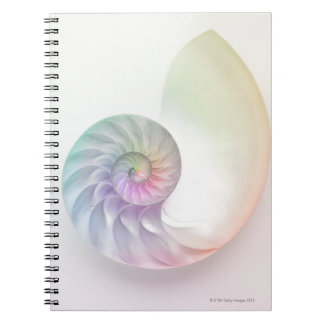 Artistic colored nautilus image notebook