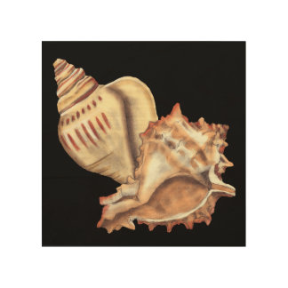 Artistic Conch Shells Wood Wall Art
