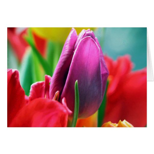 Artistic floral Birthday card with tulips