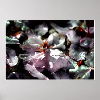 Artistic Macro Photo, Fallen Cherry Blossoms Poster