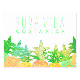 Artistic Pineapple Costa Rica Pura Vida Postcard