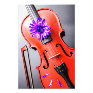 Artistic Poetic Violin with Violet Flower Photo