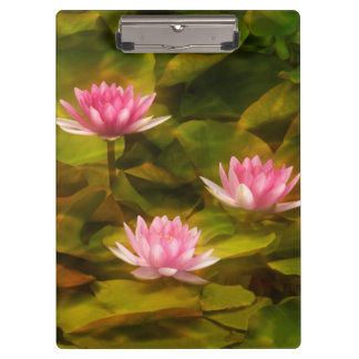 Artistic water lilies, California Clipboards