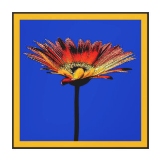 Artsy Gerbera Daisy Watercolor Stretched Canvas Prints