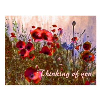 Arty poppies! postcard
