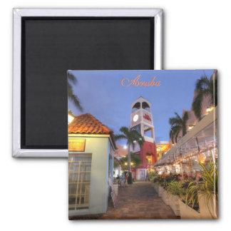 Aruba Palm Beach Magnet