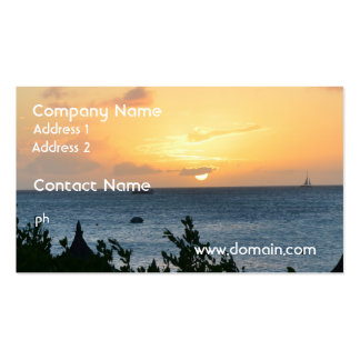 Aruba Setting Sun Pack Of Standard Business Cards