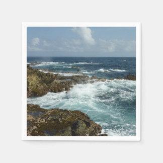 Aruba's Rocky Coast and Blue Ocean Paper Napkins