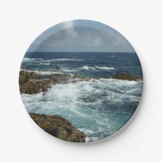 Aruba's Rocky Coast and Blue Ocean Paper Plate