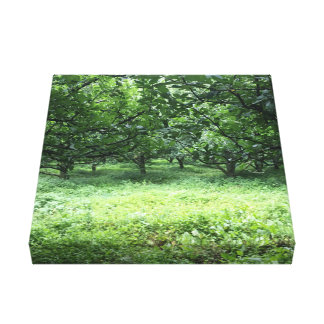 As Green As It Get Canvas Print