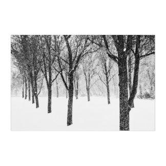 as I side with trees Acrylic Wall Art