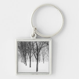 as I side with trees Key Ring