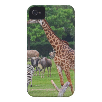 As Long As We're Together iPhone 4 Case