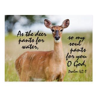 As the deer pants for water, Bible Psalm 42 Custom Postcard