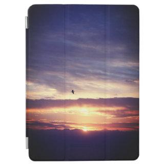 Asahi and sea and bird iPad air cover