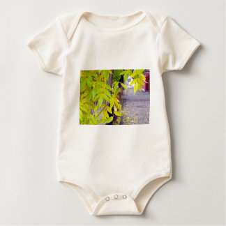 Ash with yellow leaves and pavement tiles baby bodysuit