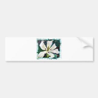 Ashe Magnolia image Bumper Sticker