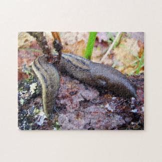 Ashy-Grey Slug Photo Puzzle with Gift Box