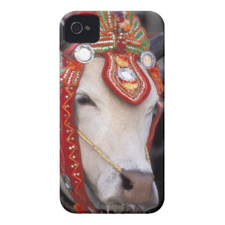 Asia, Burma (Myanmar) Shinbyu ceremony. Bull iPhone 4 Case-Mate Cases