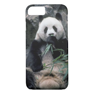 Asia, China, Chundu, Giant panda iPhone 7 Case
