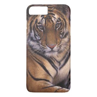 Asia, India, Bandhavgarth National Park, iPhone 7 Plus Case
