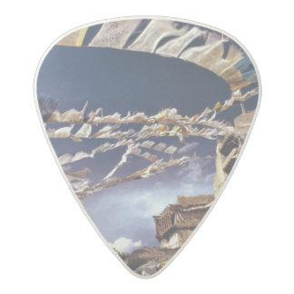 Asia, India, Ladakh, Leh. Known as Little Acetal Guitar Pick