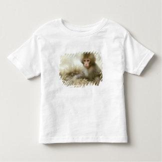 Asia, Japan, Nagano, Jigokudani, Snow Monkey 3 T-shirts