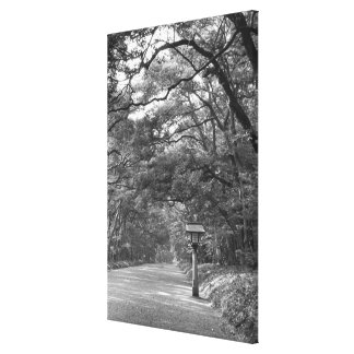 Asia, Japan, Tokyo, Grounds of Meiji Shrine, Stretched Canvas Prints