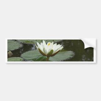 Asia Lotus Flower Bumper Stickers