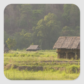 Asia, Thailand, Mae Hong Son, Rice huts in the Square Sticker