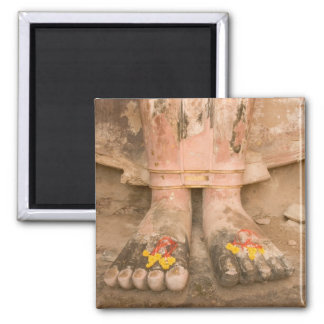 Asia Thailand, Sukhothai, Buddha's feet and Square Magnet