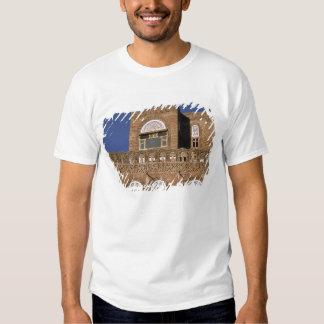 Asia, Yemen, Sana'a. Yemeni architecture detail. T Shirts