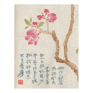 Asian Cherry Blossom Vintage Postcard