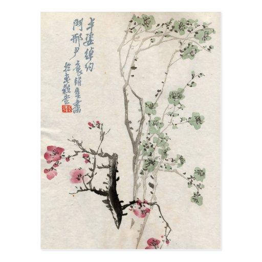 Asian Cherry Blossoms Vintage Postcard