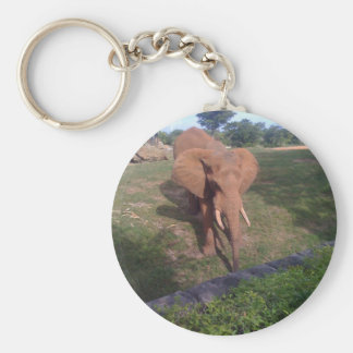 Asian Elephant Basic Round Button Key Ring