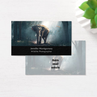 Asian Elephant in a Sunlit Forest Clearing Business Card