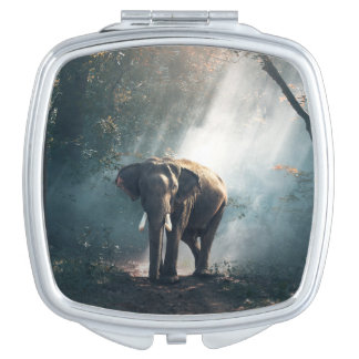 Asian Elephant in a Sunlit Forest Clearing Mirror For Makeup