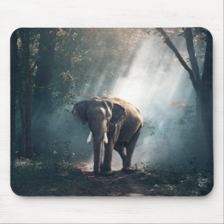 Asian Elephant in a Sunlit Forest Clearing Mouse Pad