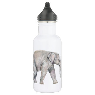 Asian Elephant Siblings 532 Ml Water Bottle