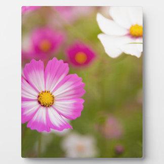 Asian flower plaque