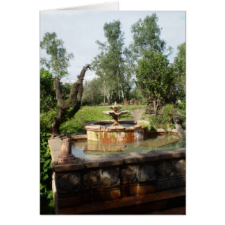 ASIAN FOUNTAIN IN THE JUNGLE CARD