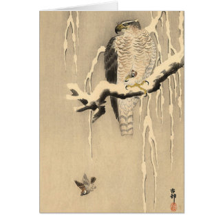Asian Goshawk Card