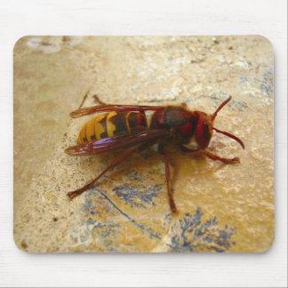 Asian Hornet Mouse Mat